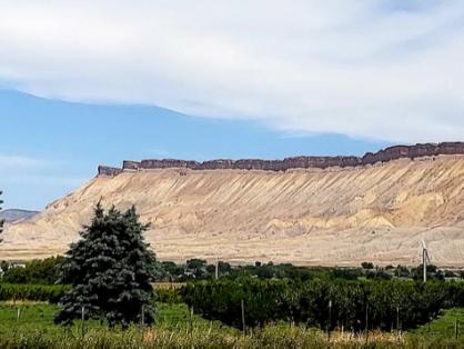 Book cliffs Palisade, CO